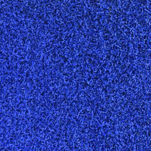 COOLPLAY ROYAL BLUE